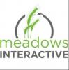 Meadows Interactive