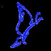 Web Design by Galileo