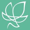 The Ivy Group, Ltd.