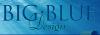 Big Blue Design