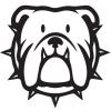 Bulldog Technical Solutions