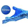 ItGresa Consulting Group, Inc.