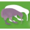 Kiwi Marketing Group