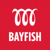 Bayfish Creative