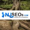 NJSEOs Website Design, SEO & PPC Agency