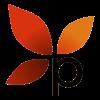 Paramaya Web Consulting, LLC