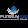 Platinum SEO Services